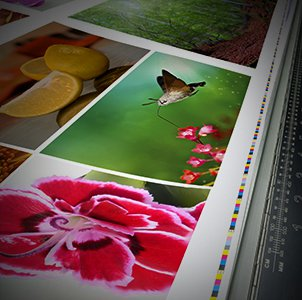 Printers of all kinds need graphic design files to serve their customers