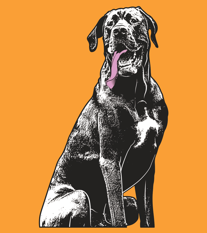 Vector Artwork design with black dog full size